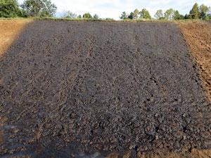 Engineered Soil Before